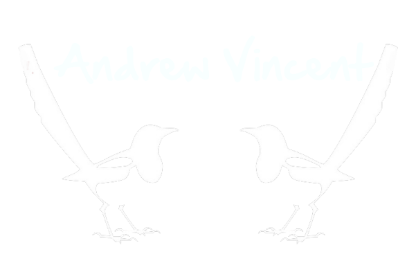 andrew vincent photography